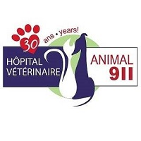 <br /> <b>Notice</b>:  Undefined variable: term in <b>/home/circulai/public_html/v4.circulaire-en-ligne.ca/applications/site/views/directory/businesses_list.php</b> on line <b>38</b><br />  hopital-veterinaire-animal-911