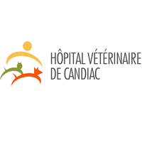 <br /> <b>Notice</b>:  Undefined variable: term in <b>/home/circulai/public_html/v4.circulaire-en-ligne.ca/applications/site/views/directory/businesses_list.php</b> on line <b>38</b><br />  hopital-veterinaire-de-candiac