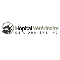 <br /> <b>Notice</b>:  Undefined variable: term in <b>/home/circulai/public_html/v4.circulaire-en-ligne.ca/applications/site/views/directory/businesses_list.php</b> on line <b>38</b><br />  hopital-veterinaire-de-lormiere-inc