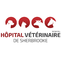 <br /> <b>Notice</b>:  Undefined variable: term in <b>/home/circulai/public_html/v4.circulaire-en-ligne.ca/applications/site/views/directory/businesses_list.php</b> on line <b>38</b><br />  hopital-veterinaire-de-sherbrooke